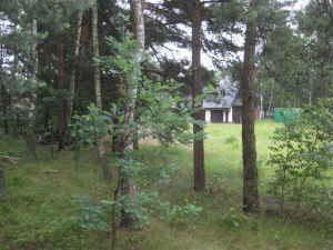 Lokal użytkowy na sprzedaż Wołomin, Wołomin  27031m2 Foto 2