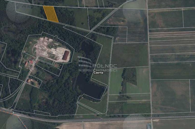 Działka leśna na sprzedaż Czerna  4700m2 Foto 2