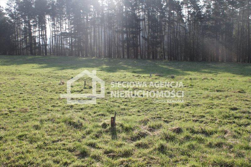Działka budowlana na sprzedaż Lubowidz  1760m2 Foto 1