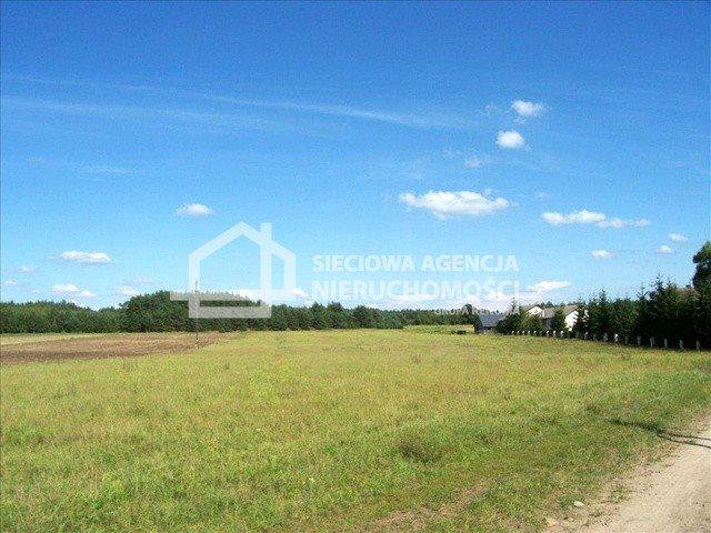 Działka siedliskowa na sprzedaż Śliwiczki  3157m2 Foto 4