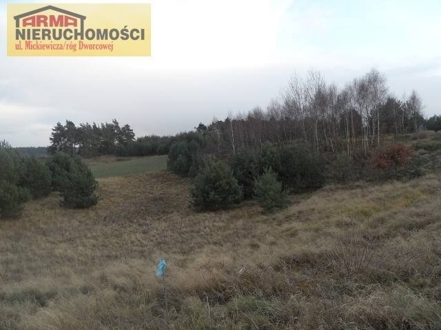 Działka budowlana na sprzedaż Grabowo  3095m2 Foto 4