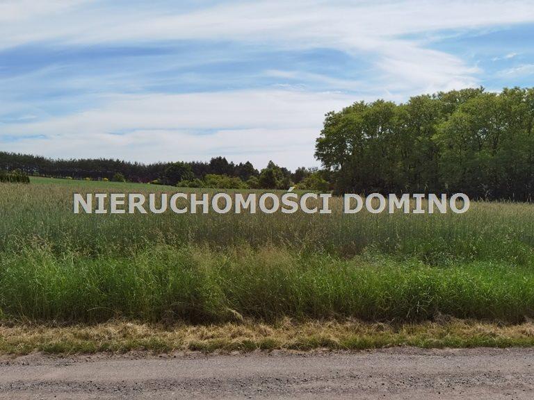 Działka budowlana na sprzedaż Nowe Skoszewy  3330m2 Foto 5