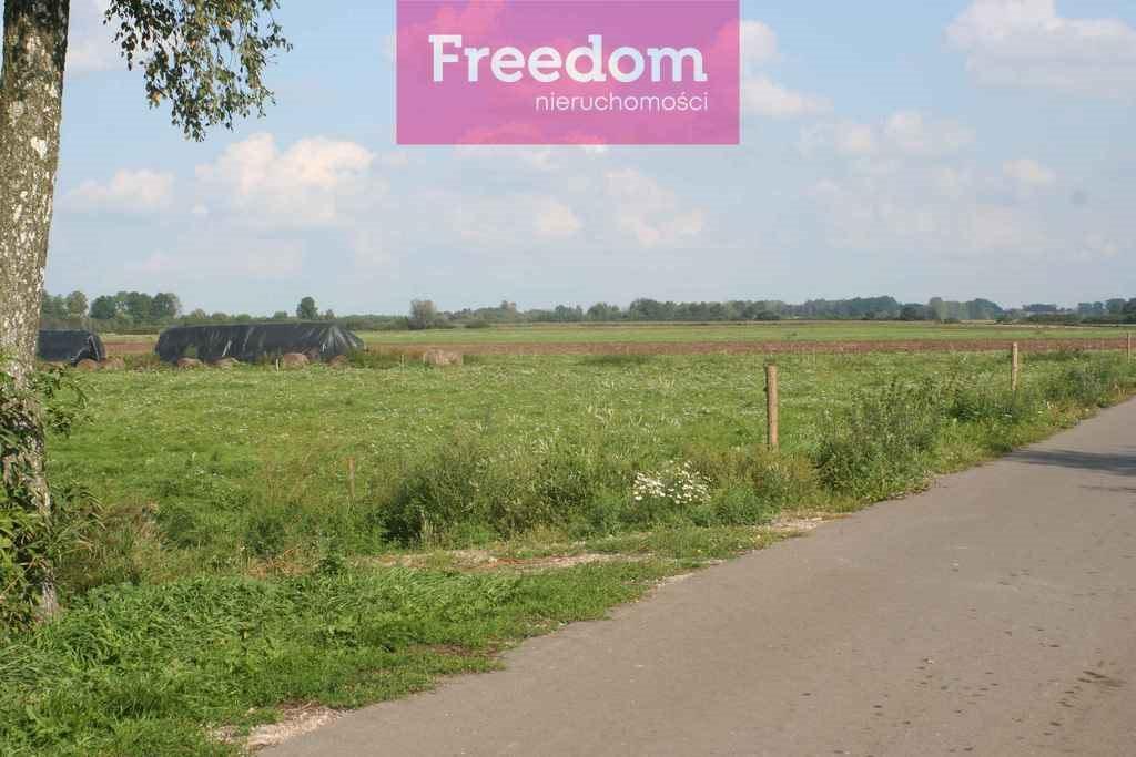 Działka rolna na sprzedaż Drużno  6101m2 Foto 2