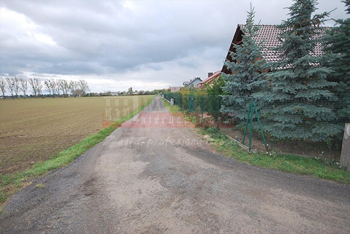 Działka inna na sprzedaż Opole, Sławice  3000m2 Foto 3