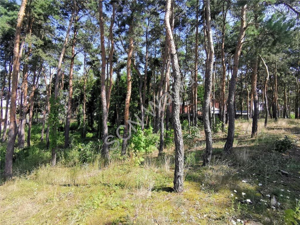 Działka leśna na sprzedaż Legionowo  1808m2 Foto 2