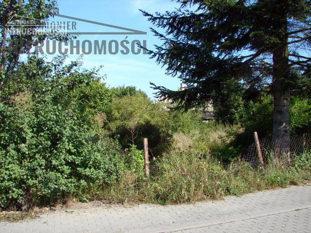 Działka budowlana na sprzedaż Kajkowo, ul. Polna  1640m2 Foto 7
