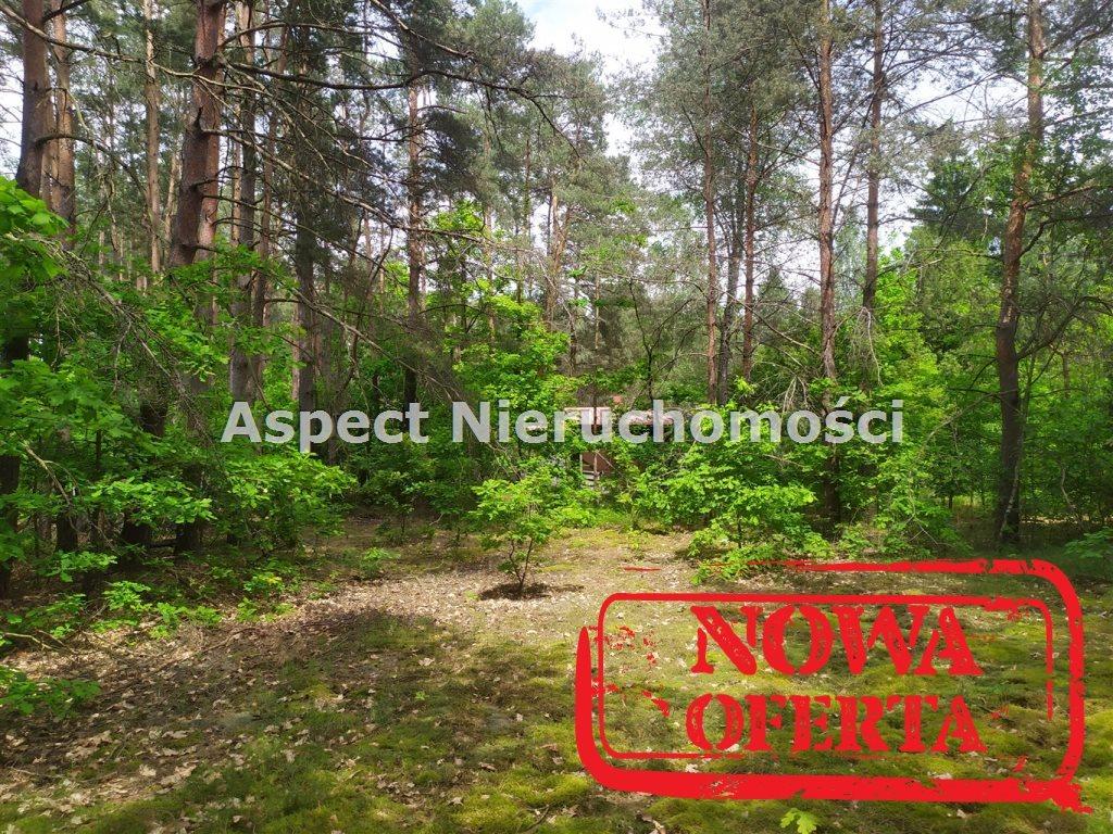 Działka rekreacyjna na sprzedaż Łochów, Jerzyska  1400m2 Foto 6