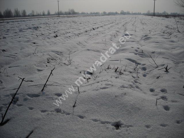 Działka inwestycyjna na sprzedaż Płochocin  5200m2 Foto 3