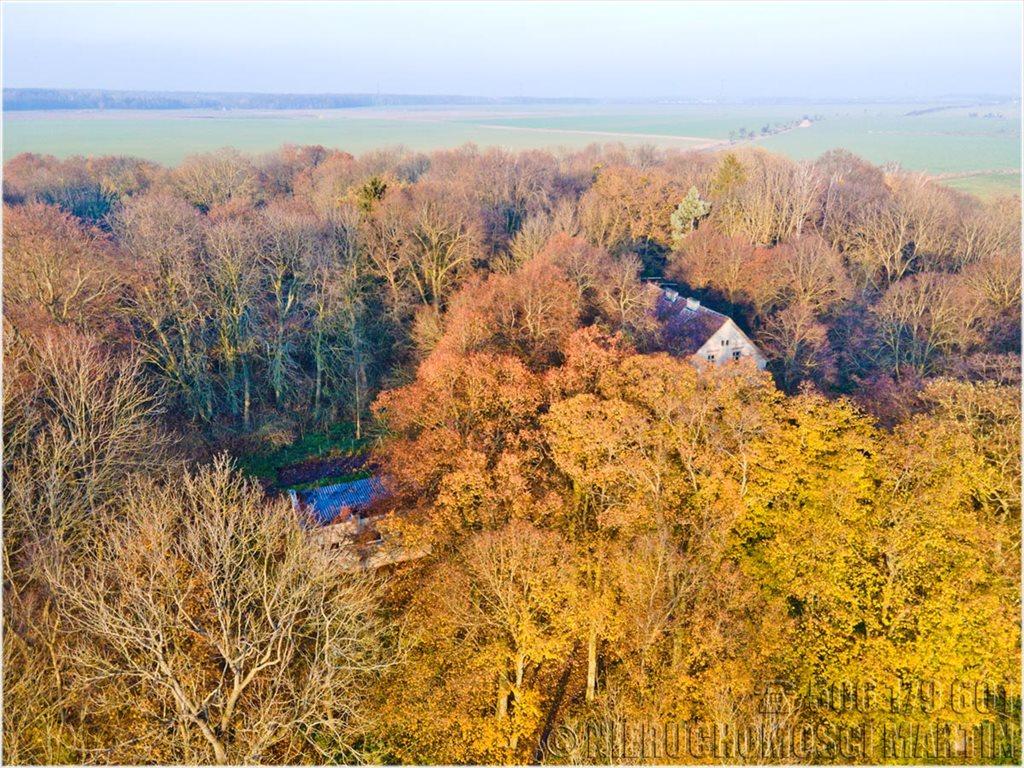 Dom na sprzedaż Chlewiska  420m2 Foto 1