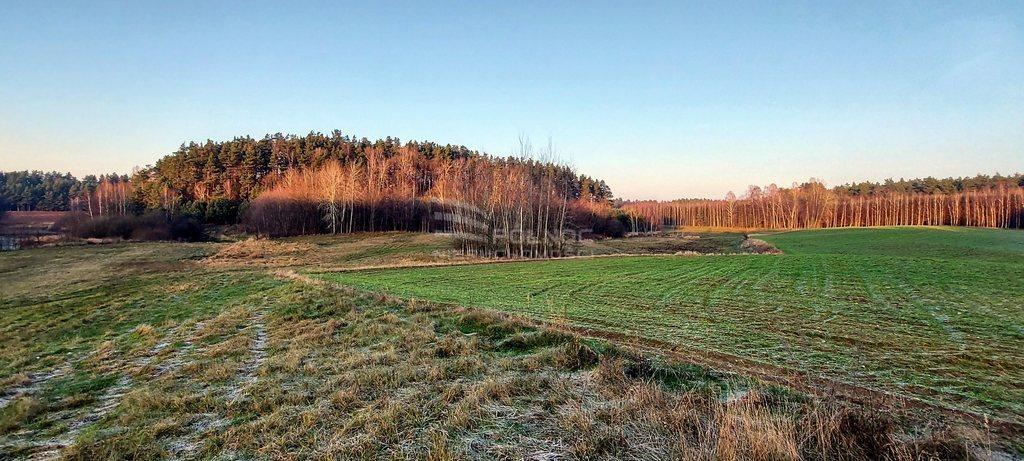 Działka leśna na sprzedaż Samagowo  26558m2 Foto 2