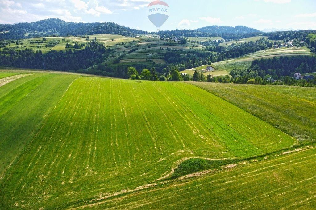 Działka rolna na sprzedaż Grywałd  8096m2 Foto 5