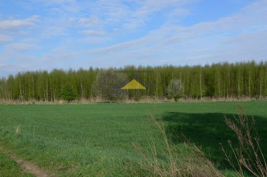 Działka inna na sprzedaż Gorzów Wielkopolski  8693m2 Foto 2