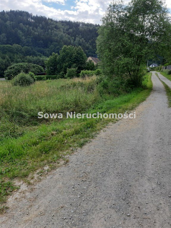 Działka inna na sprzedaż Ludwikowice Kłodzkie  1000m2 Foto 4
