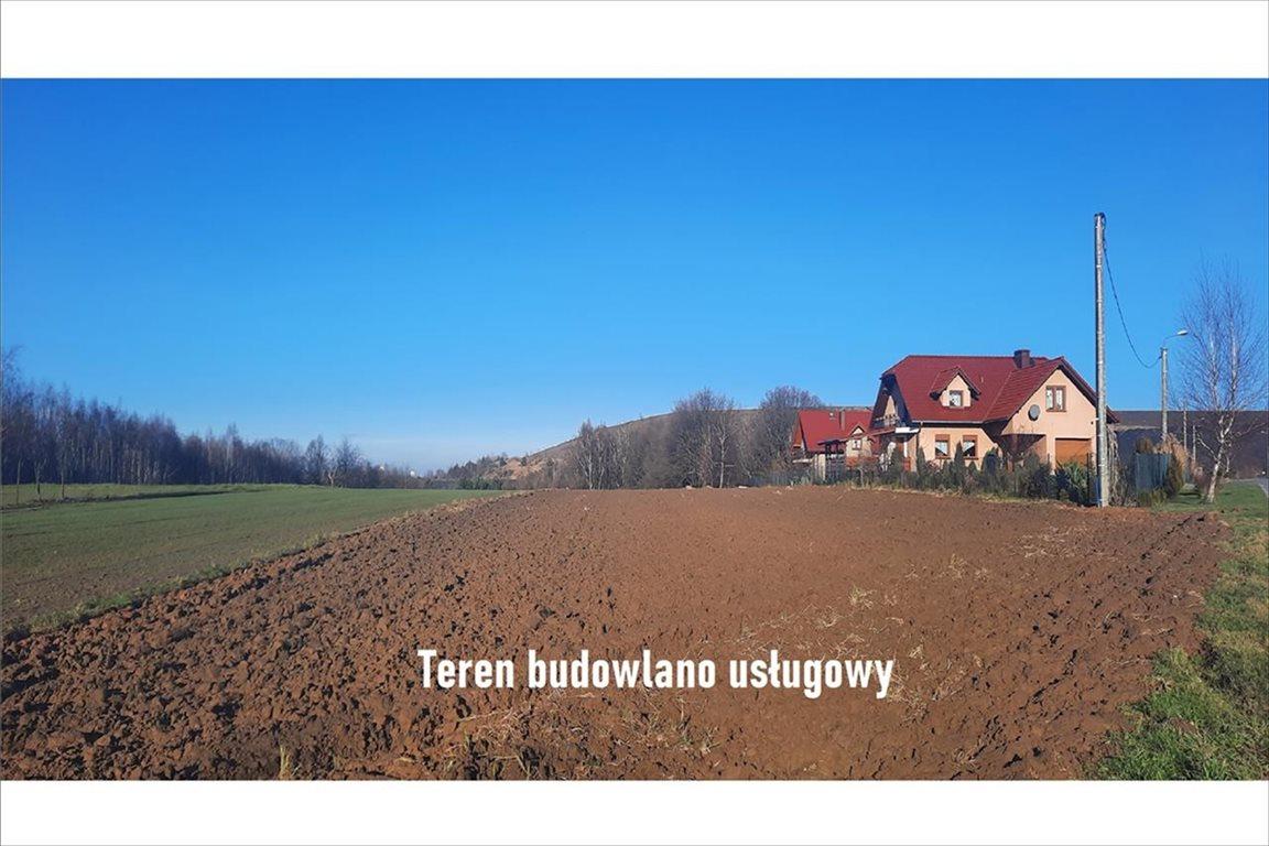 Działka budowlana na sprzedaż Gogołowa, Mszana  12222m2 Foto 5