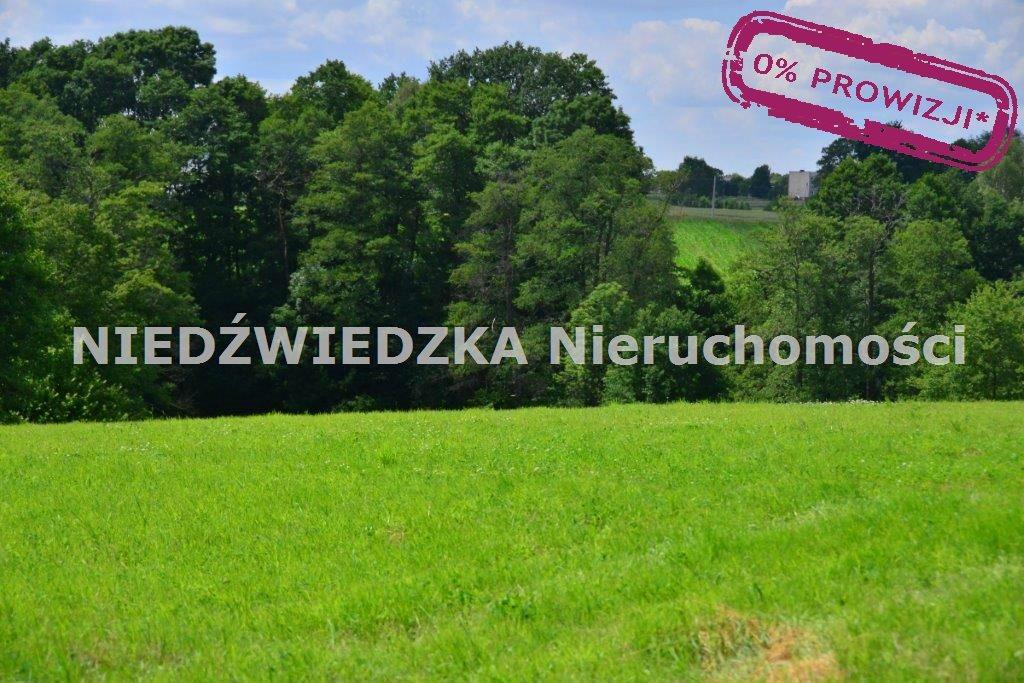 Działka budowlana na sprzedaż Mikołów, Mokre  12507m2 Foto 5