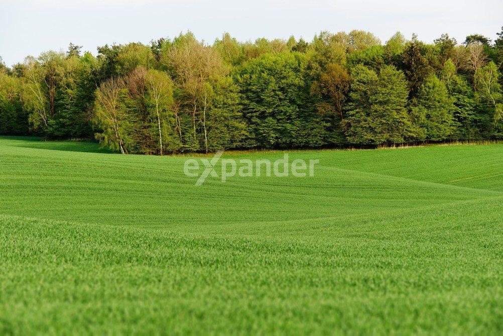 Działka rolna na sprzedaż Rzeszów  5000m2 Foto 1