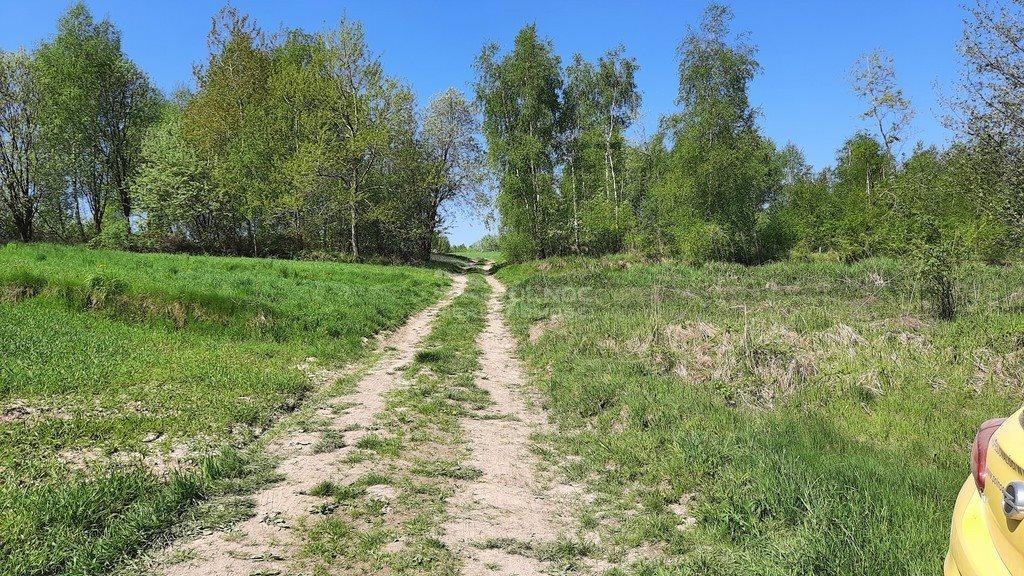 Działka rolna na sprzedaż Chrosna  5900m2 Foto 4