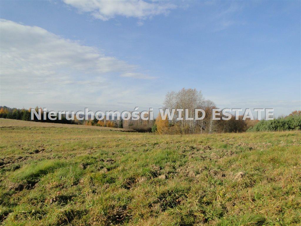 Działka rolna na sprzedaż Solina, Berezka  10398m2 Foto 5