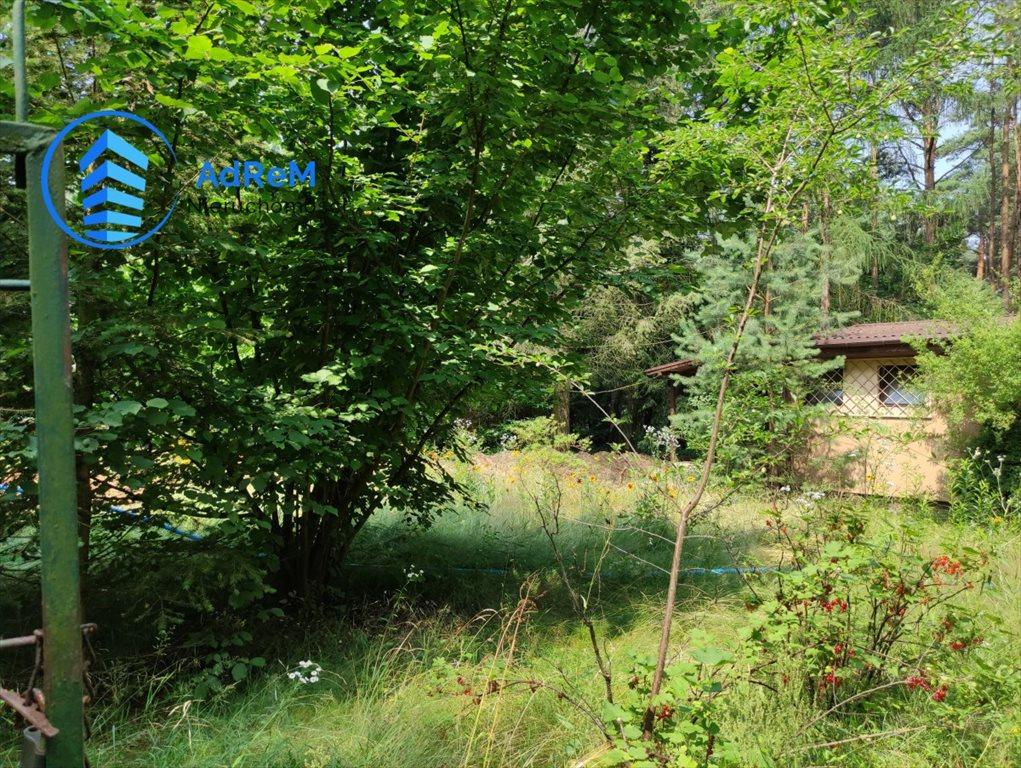 Działka leśna na sprzedaż Korzeniówka, Rysia  2356m2 Foto 3