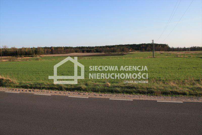 Działka siedliskowa na sprzedaż Stara Kiszewa  8767m2 Foto 5