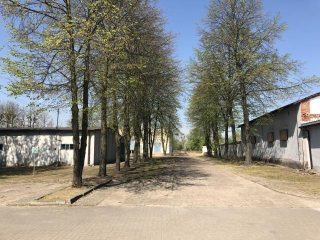 Lokal użytkowy na sprzedaż Sochaczew, Gawłowska 177  13666m2 Foto 7