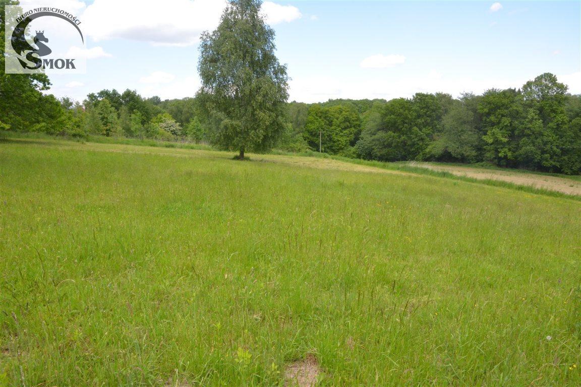 Działka rolna na sprzedaż Mogilany  1480m2 Foto 1