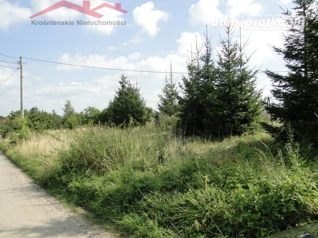 Działka rolna na sprzedaż Korczyna  1300m2 Foto 4