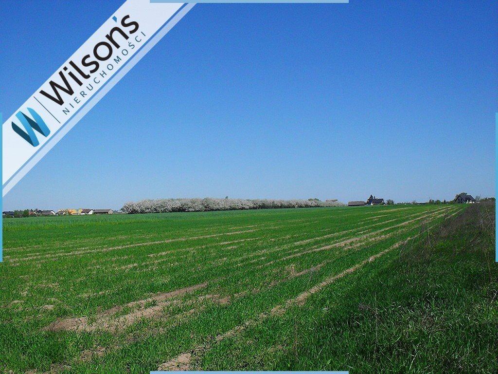 Działka rolna na sprzedaż Jedlanka  42725m2 Foto 1