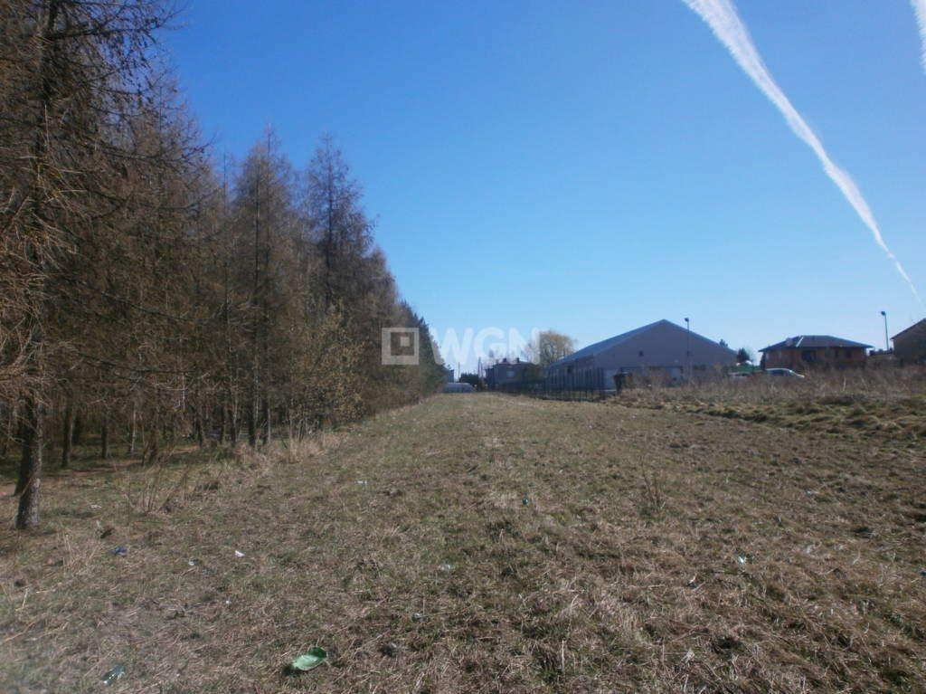 Działka budowlana na sprzedaż Rędziny, Działkowiczów  2593m2 Foto 6
