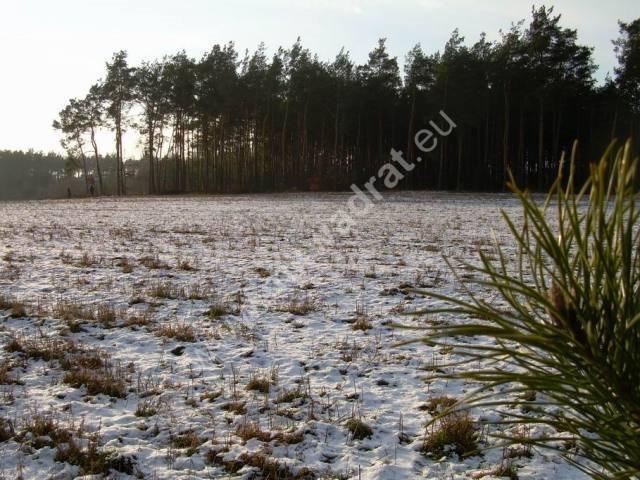 Działka rolna na sprzedaż Stanisławów  3000m2 Foto 12