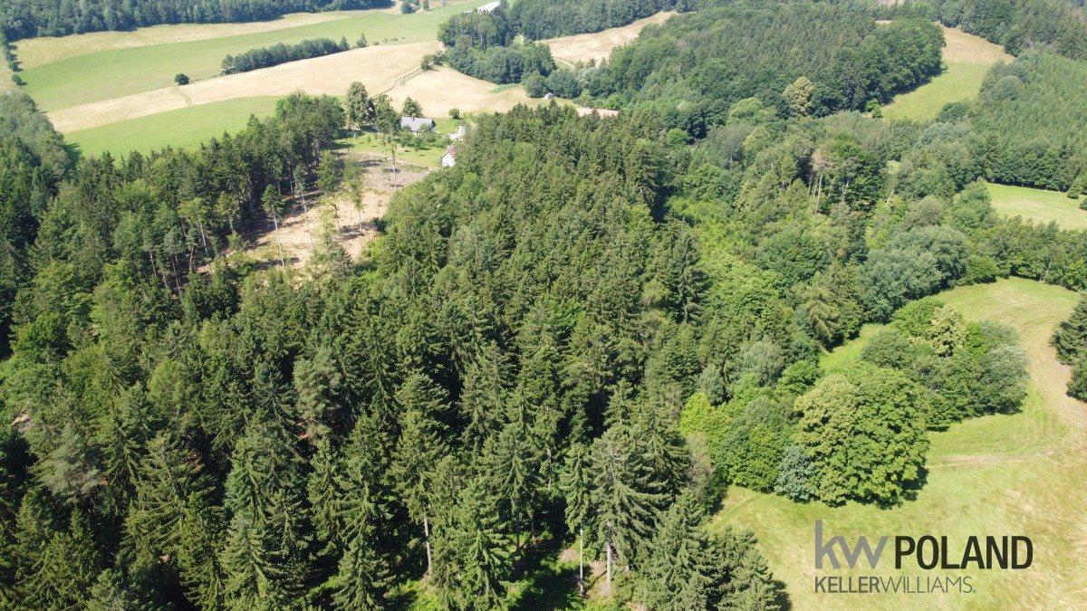 Działka rolna na sprzedaż Kudowa-Zdrój, Pstrążna  6416m2 Foto 2