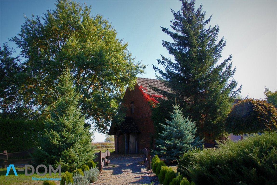 Lokal użytkowy na sprzedaż Stara Kaźmierka  1700m2 Foto 10