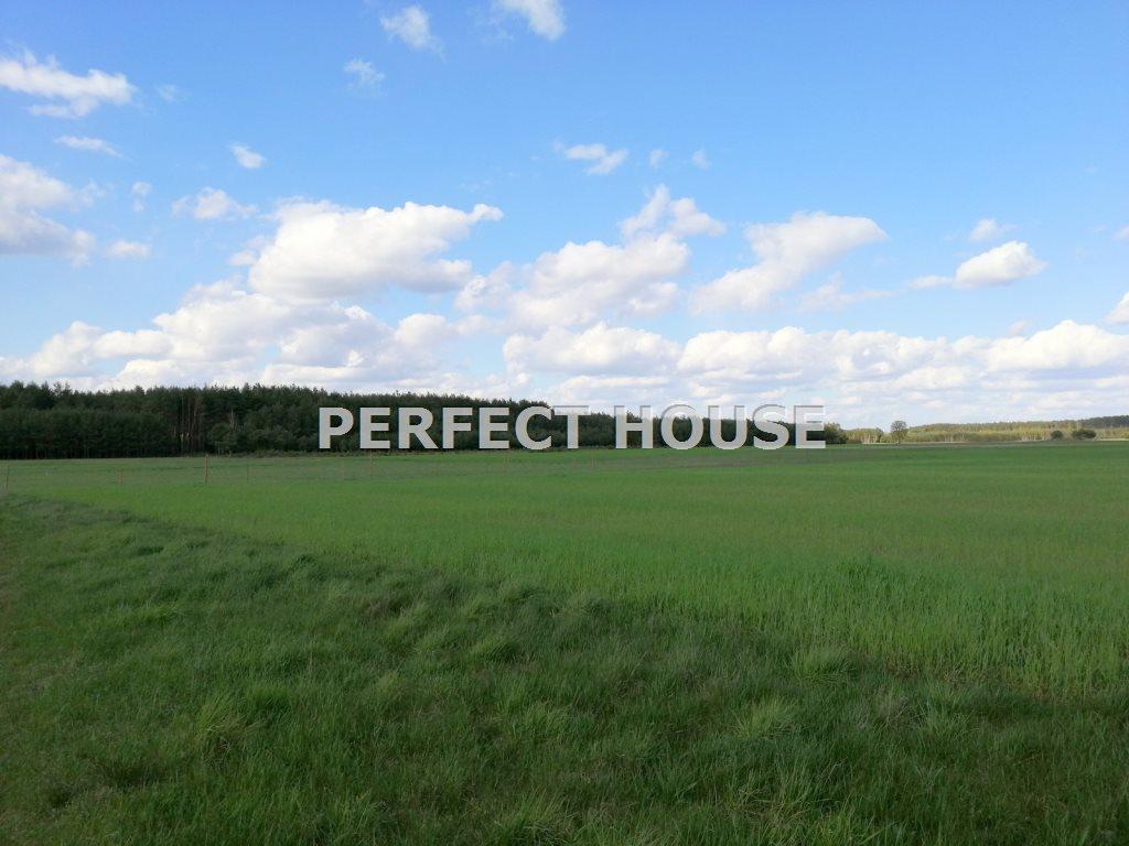 Dom na sprzedaż Drawsko  268m2 Foto 3