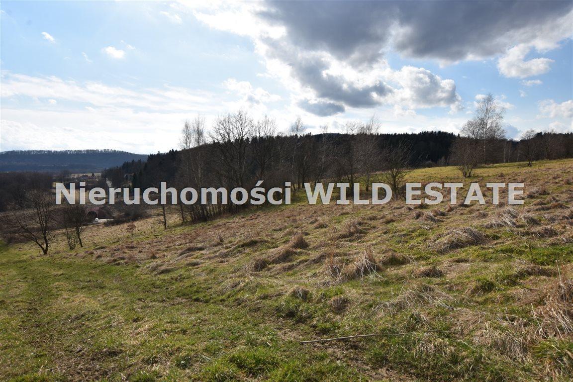 Działka inna na sprzedaż Olszanica, Uherce Mineralne  23516m2 Foto 7