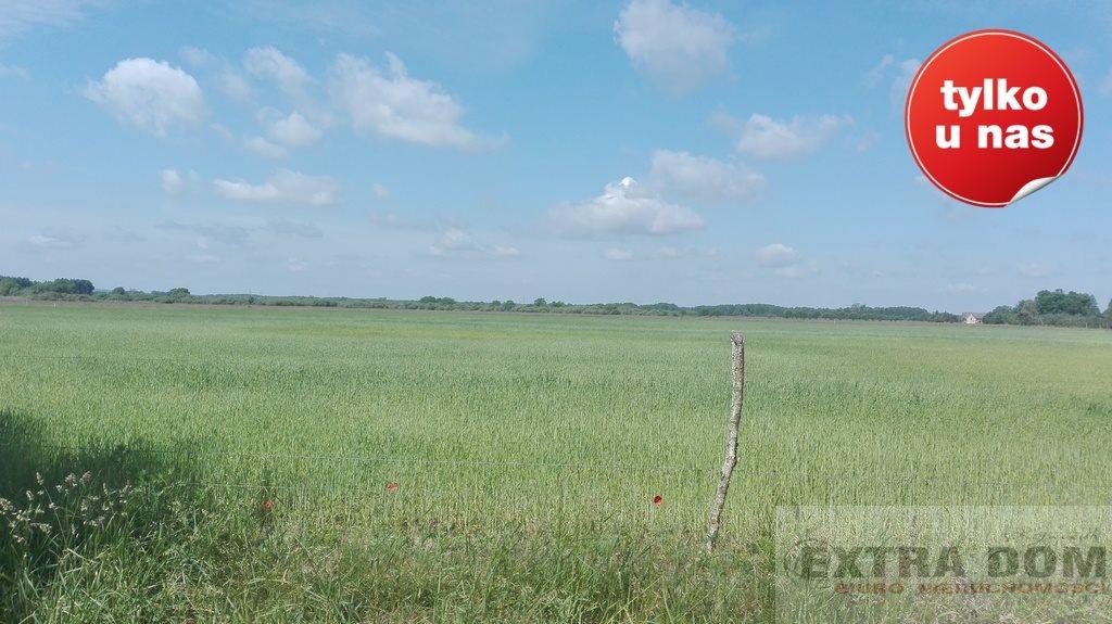 Działka rolna na sprzedaż Bochlin  320000m2 Foto 1