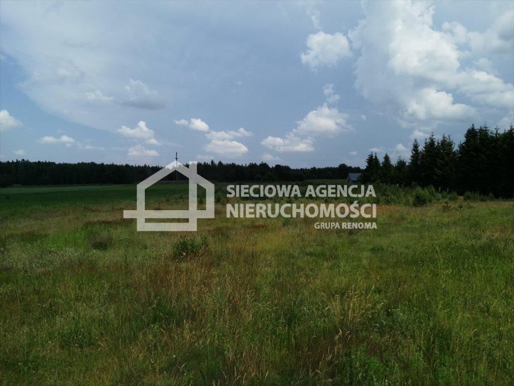 Działka siedliskowa na sprzedaż Śliwiczki  3157m2 Foto 5