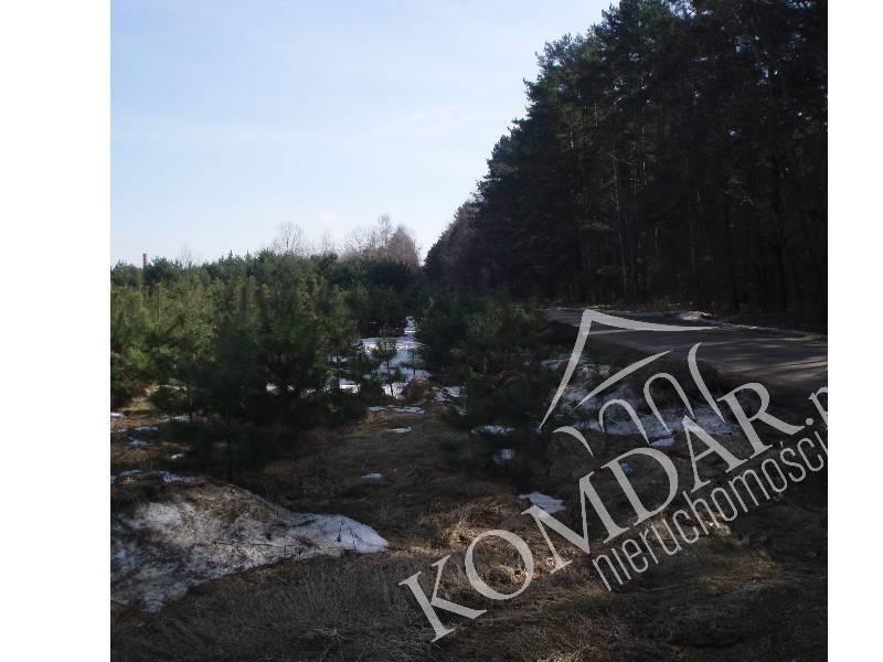 Działka rolna na sprzedaż Pokrzywnica  36400m2 Foto 2