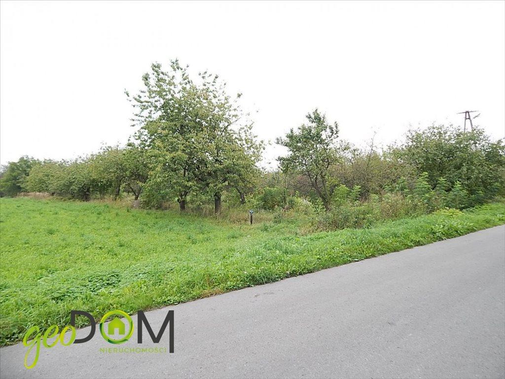 Działka rolna na sprzedaż Horodyszcze-Kolonia  11293m2 Foto 2