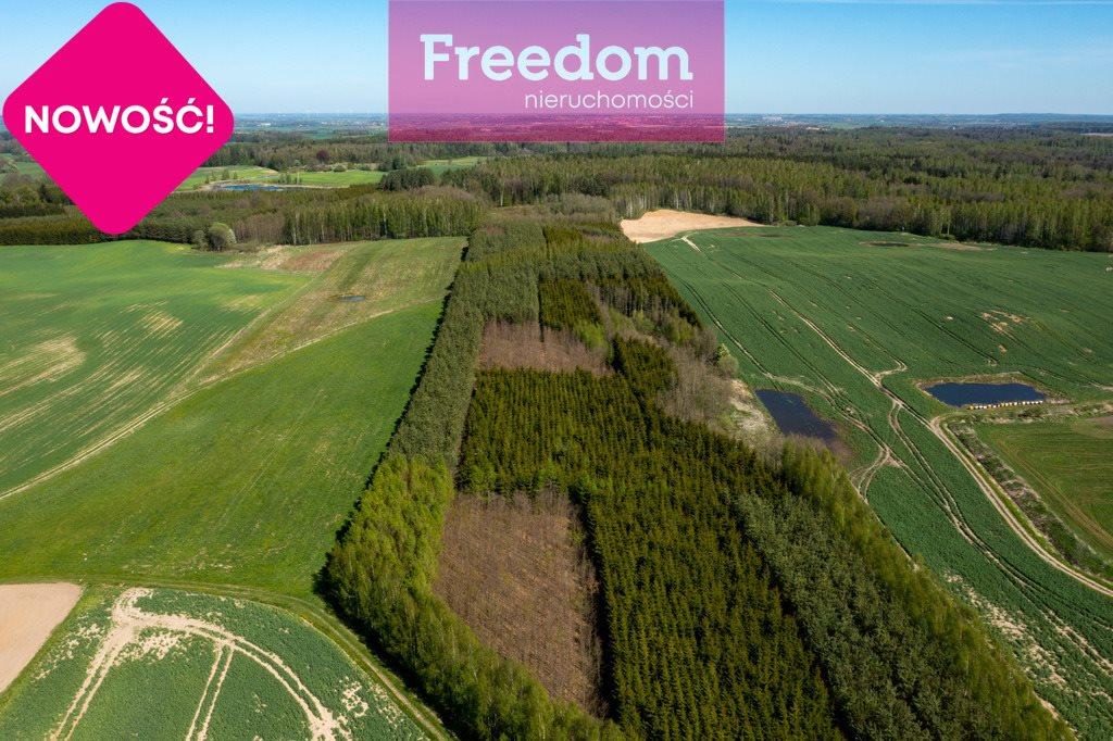 Działka leśna na sprzedaż Gronowo  70600m2 Foto 6