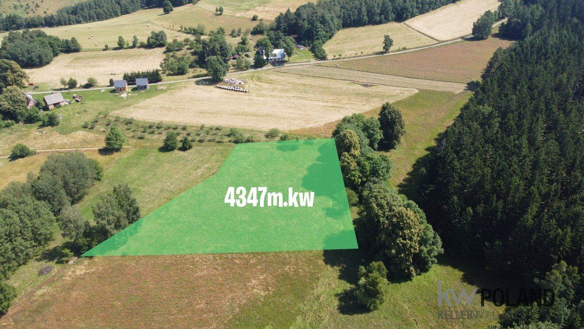 Działka rolna na sprzedaż Kudowa-Zdrój, Pstrążna  4386m2 Foto 1