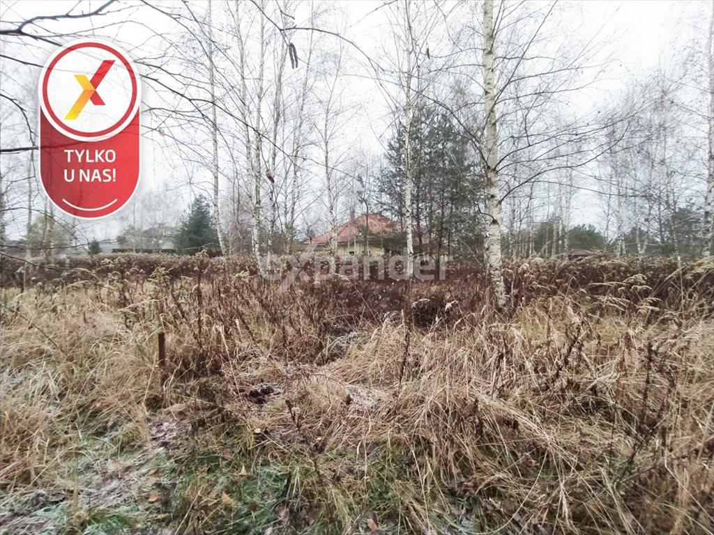 Działka budowlana na sprzedaż Miłoszyce, Bukowa  3041m2 Foto 5
