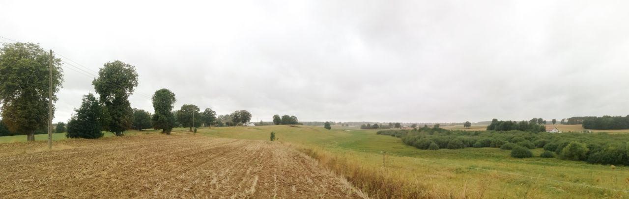 Działka rolna na sprzedaż Jeleń  5141m2 Foto 5