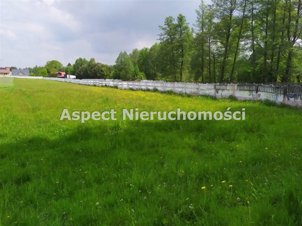Działka budowlana na sprzedaż Nowa Osuchowa  2300m2 Foto 2
