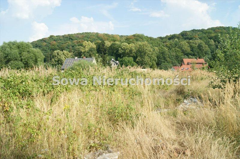 Działka budowlana na sprzedaż Świebodzice, Pełcznica  2360m2 Foto 4