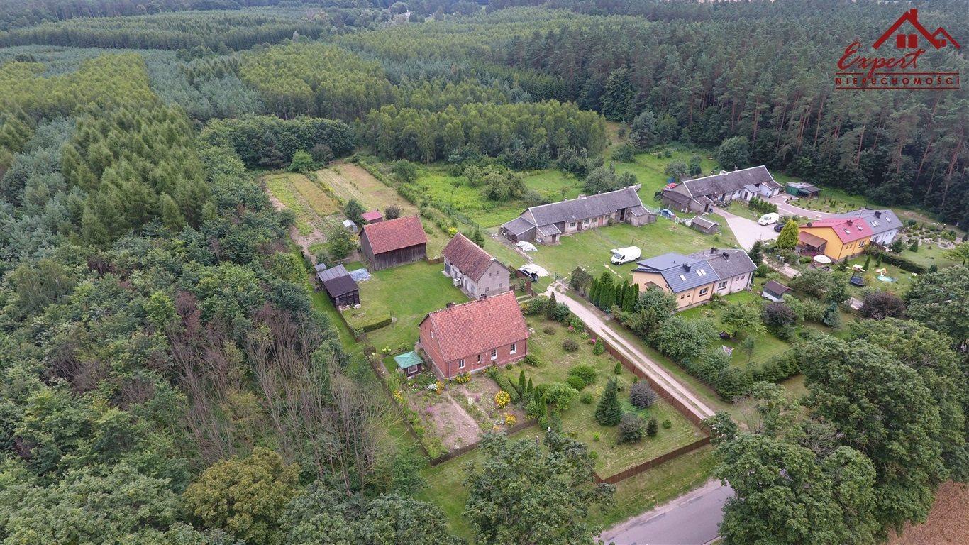 Dom na sprzedaż Liwa  99m2 Foto 2