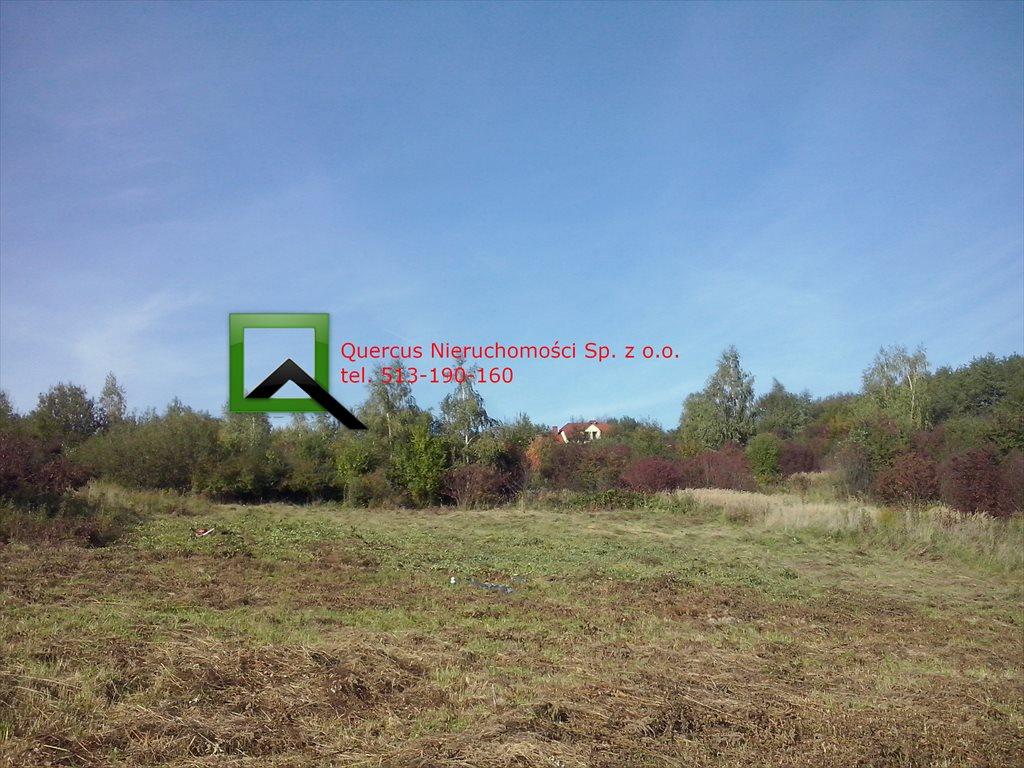 Działka budowlana na sprzedaż Raciborsko  1300m2 Foto 2