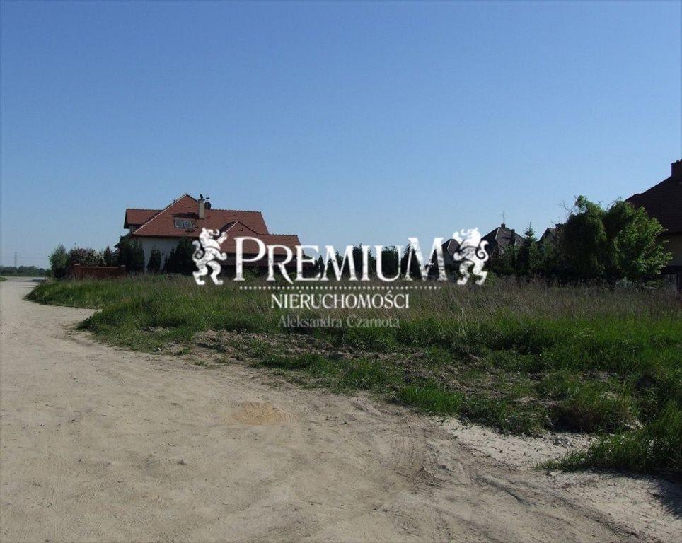 Działka budowlana na sprzedaż Radomierzyce, Radomierzyce  1800m2 Foto 7