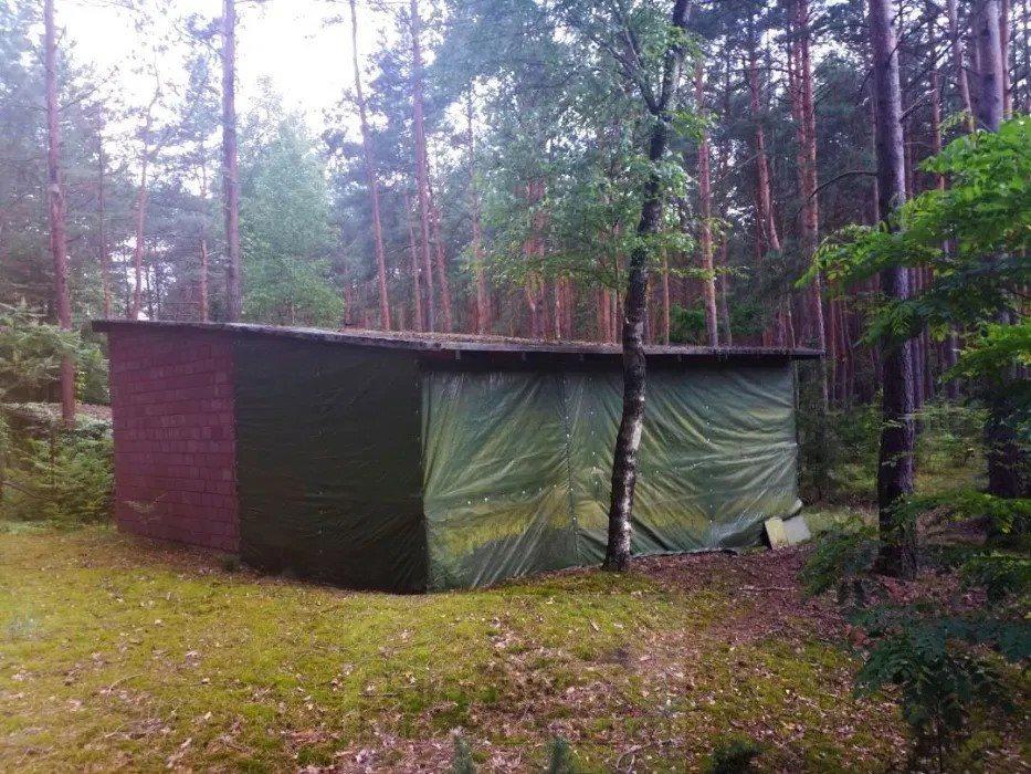 Dom na sprzedaż Łosie  50m2 Foto 5