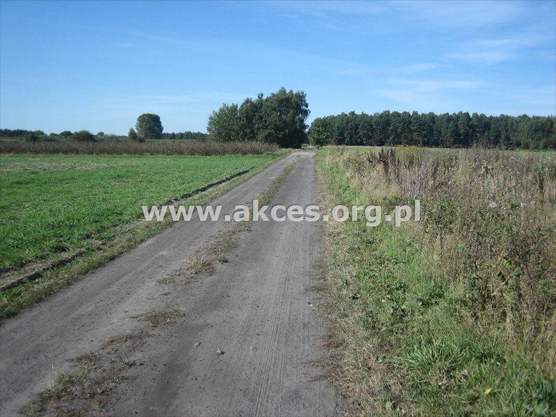 Działka budowlana na sprzedaż Adamów-Parcel  3850m2 Foto 3