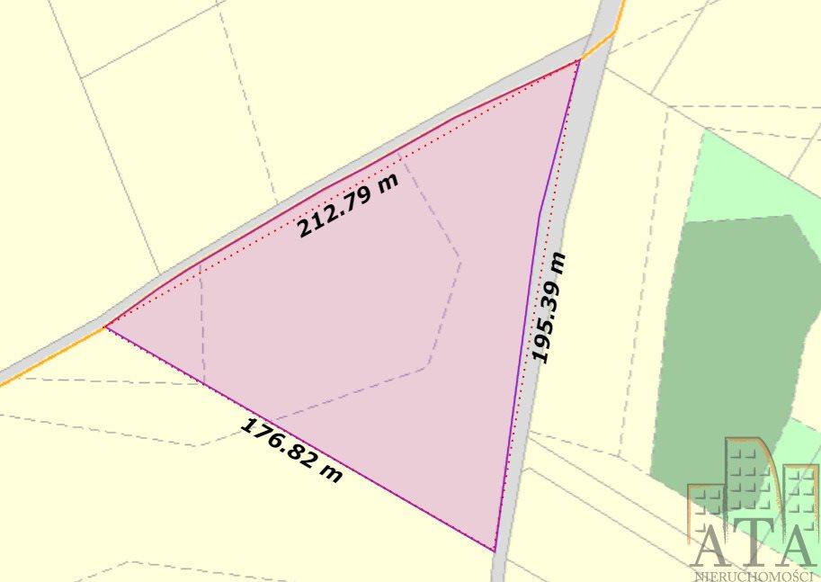 Działka siedliskowa na sprzedaż Przezdrowice  16457m2 Foto 1